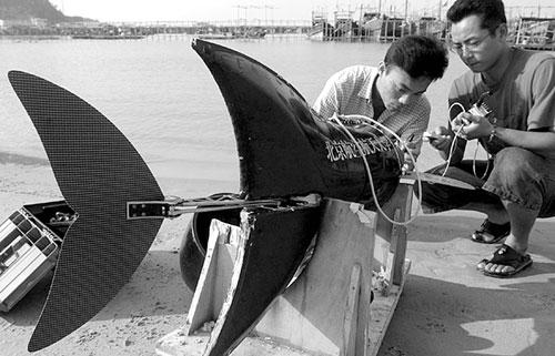 【组图】仿生机器鱼助力郑成功战舰遗址水域水下挖掘 - 蝶岛信风 - 东山资讯网