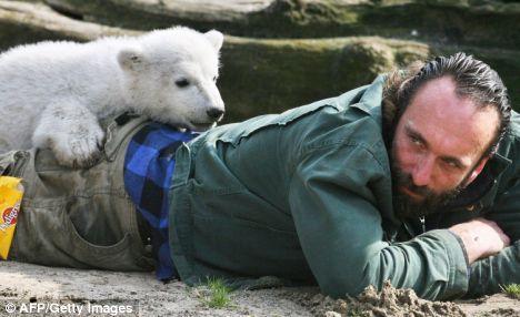 一部人和熊性交的电影_德国明星北极熊饲养员神秘死亡