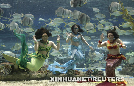 """6月5日,在菲律宾首都马尼拉的马尼拉海洋公园,""""美人鱼""""秀正在上演."""